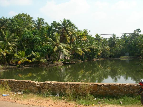 amritapuri_photo083.jpg